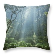 Hawaiian Rainforest Throw Pillow by Gregory Dimijian MD