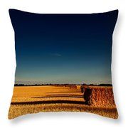 Hay Bales Throw Pillow by Cale Best