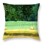 Hay Landscape Throw Pillow by France Laliberte