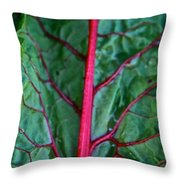 Heart Wise Throw Pillow by Susan Herber