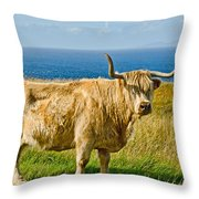 Highland Cow Throw Pillow by Chris Thaxter