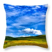 Hills Of Wheat In The Palouse Throw Pillow by David Patterson