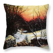 Homeward Bound Throw Pillow by Andrew Read