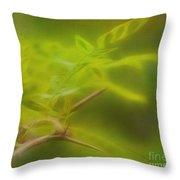 Honey Locust Throw Pillow by Judi Bagwell