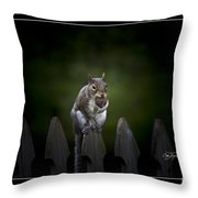 Hood Ornament Throw Pillow by Cris Hayes