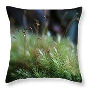 Hoomalumalu Kuhiwa Synchronicity Throw Pillow by Sharon Mau