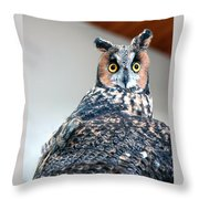 Hooter  Throw Pillow by LeeAnn McLaneGoetz McLaneGoetzStudioLLCcom