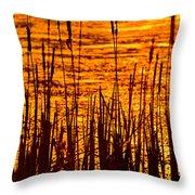 Horicon Cattail Marsh Wisconsin Throw Pillow by Steve Gadomski