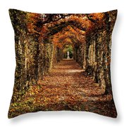 Hornbeam Alles, Birr Castle, Co Offaly Throw Pillow by The Irish Image Collection