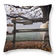 Horse At Fence Throw Pillow by Jim Corwin and Photo Researchers