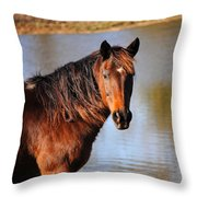Horse By The Water Throw Pillow by Jai Johnson