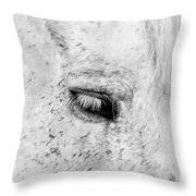 Horse Eye Throw Pillow by Darren Fisher