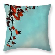 Hot And Cold Throw Pillow by Aimelle