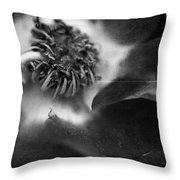 How Bittersweet This Would Taste Throw Pillow by Laurie Search