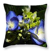 Hydrangea Duo Throw Pillow by Sandi OReilly