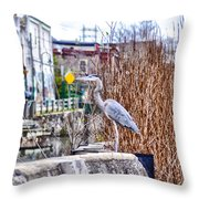 I Should Have Went To Florida Throw Pillow by Bill Cannon