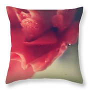 I Wonder If You Ever Miss Me Throw Pillow by Laurie Search