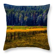 Idaho Hay Bales  Throw Pillow by David Patterson