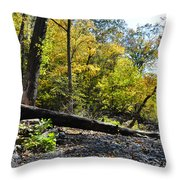 If A Tree Falls Throw Pillow by Bill Cannon
