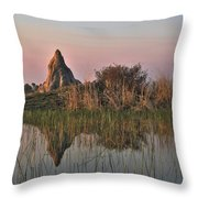 In A Mirror Throw Pillow by William Fields