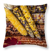 Indian Corn Throw Pillow by Garry Gay