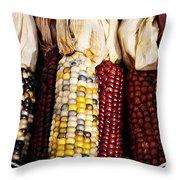 Indian Corn Throw Pillow by Jarrod Erbe