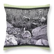 Intangible Bunny Throw Pillow by Susan Kinney