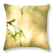 Interlude Throw Pillow by Amy Tyler