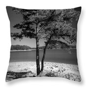 Intertwined Throw Pillow by M Glisson