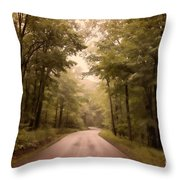 Into The Mists Throw Pillow by Lois Bryan