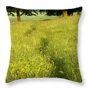 Ireland Trail Through Buttercup Meadow Throw Pillow by Peter McCabe