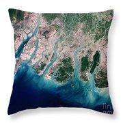 Irrawaddy River Delta Throw Pillow by Nasa