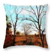 Journey To The Past Throw Pillow by Bill Cannon