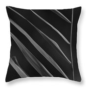 Just Grass bw Throw Pillow by Heiko Koehrer-Wagner
