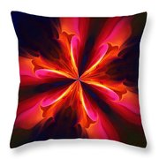Kaliedoscope Flower 121011 Throw Pillow by David Lane