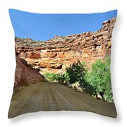 Kane Creek Road Throw Pillow by Marty Koch