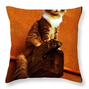 Kobe On Viga Throw Pillow by Susanne Still