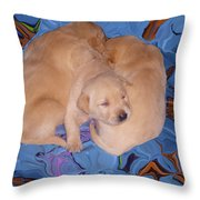 Lab Pups 2 Throw Pillow by Aimee L Maher Photography and Art