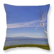 Lake Constace Friedrichshafen Throw Pillow by Joana Kruse