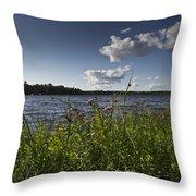 Lake View Throw Pillow by Gary Eason