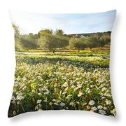 Landscape With Daisies Throw Pillow by Carlos Caetano