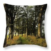 Larchill Arcadian Garden, County Throw Pillow by The Irish Image Collection