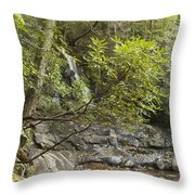 Laurel Falls 6226 Throw Pillow by Michael Peychich