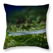 Leaf On Grass Throw Pillow by Andreas Levi