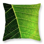 Leaf Texture Throw Pillow by Carlos Caetano