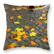 Leafs in Ground Throw Pillow by Carlos Caetano