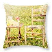 Lemonade Throw Pillow by Darren Fisher