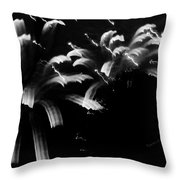 Licorice Sky Throw Pillow by DigiArt Diaries by Vicky B Fuller