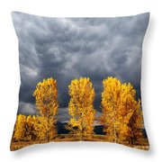 Light And Darkness Throw Pillow by Evgeni Dinev