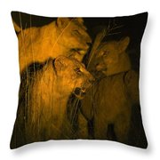 Lions At Night Throw Pillow by Carson Ganci